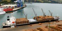 angeliczephyr_ships_cargo_timber_logs_dunedin_lumixfz200_dockworkers-171123