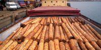 yalcin-kereste-ins-gid-hayv-san-ve-tic-ltd-sti-yalcin-kereste-plywood-osb-1-r1